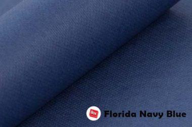 Florida Navy Blue