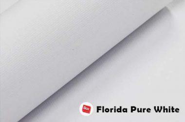 Florida Pure White